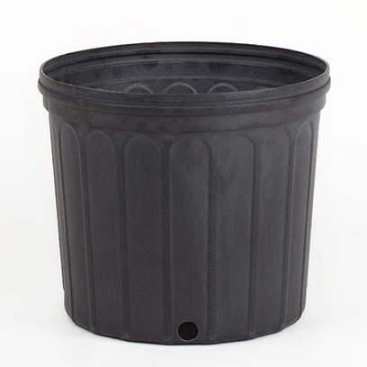 Plastic 3 gallon pots