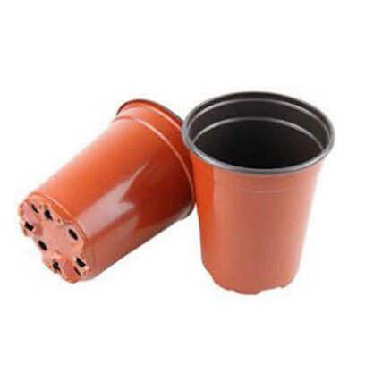 9cm(top dia) x 6.7cm(height) grow pots