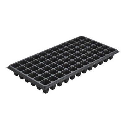 XT 72 cells seedling trays